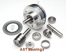AST SI40ES plain bearings